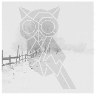 hartwick-winter